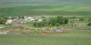Yenice Kızıldam Köyü
