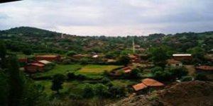 Yenice Öğmen Köyü