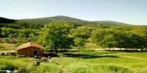 Yenice Seyvan Köyü