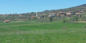 Araç Aşağıçobanözü Köyü