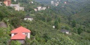 Görele Aralıkoz Köyü