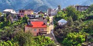 Görele Ardıç Köyü
