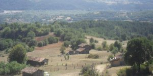 Araç Çalköy Köyü
