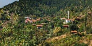 Araç Çerçiler Köyü