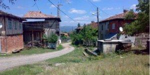 Araç Haliloba Köyü