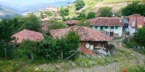 Araç Karacık Köyü