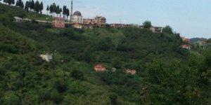 Görele Güneyköy Köyü