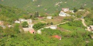 Görele İnanca Köyü