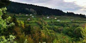 Bozkurt Çiçekyayla Köyü