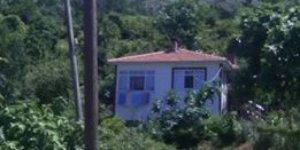 Bozkurt Darsu Köyü