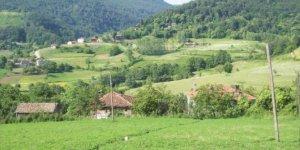 Bozkurt Kızılcaelma Köyü