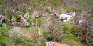 Bozkurt Kirazsökü Köyü