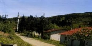 Bozkurt Köseali Köyü