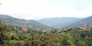 Bozkurt Kutluca Köyü