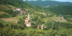 Bozkurt Sakızcılar Köyü