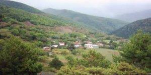 Bozkurt Tezcan Köyü