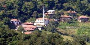 Bozkurt Yaylatepe Köyü