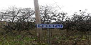 Görele Recepli Köyü
