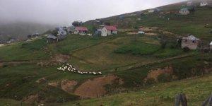 Güce Düzçukur Köyü