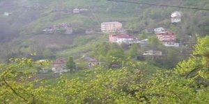 Keşap Arnavutköy Köyü