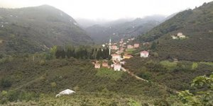 Keşap Çamlıca Köyü