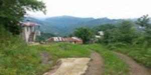 Keşap Taflancık Köyü