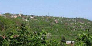 Keşap Yazlık Köyü