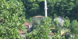 Cide Kayaardı Köyü