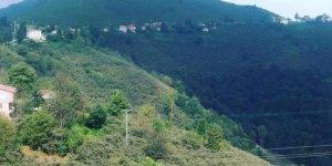 Piraziz Esentepe Köyü