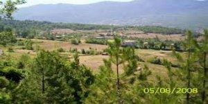 Cide Kethüda Köyü