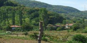 Cide Köseli Köyü