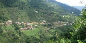 Piraziz Şerefli Köyü