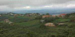 Piraziz Tepeköy Köyü