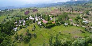 Şebinkarahisar Bayhasan Köyü