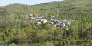 Şebinkarahisar Doğanyuva Köyü