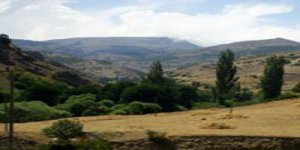 Şebinkarahisar Gökçetaş Köyü