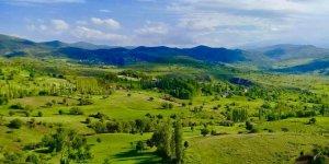 Şebinkarahisar Güneygören Köyü
