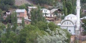 Şebinkarahisar Hocaoğlu Köyü
