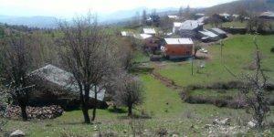 Şebinkarahisar Ovacık Köyü