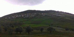 Şebinkarahisar Örencik Köyü