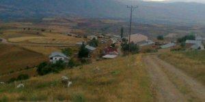 Şebinkarahisar Yakınca Köyü