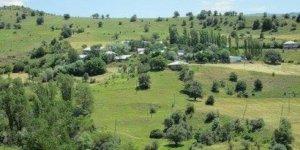 Şebinkarahisar Yeniyol Köyü