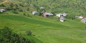 Şebinkarahisar Yeşilyayla Köyü