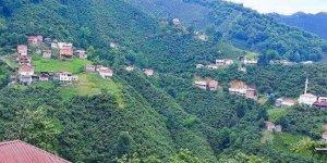 Tirebolu Arslancık Köyü