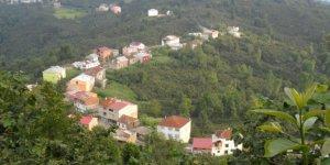 Tirebolu Belen Köyü