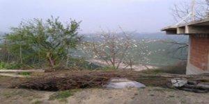Tirebolu Köseler Köyü