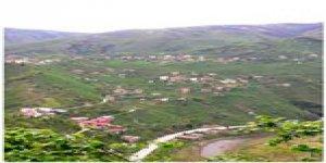 Tirebolu Kuzgun Köyü