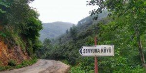 Tirebolu Şenyuva  Köyü