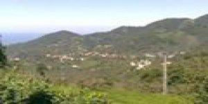 Tirebolu Yalç Köyü