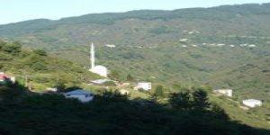 Tirebolu Yukarıboğalı Köyü